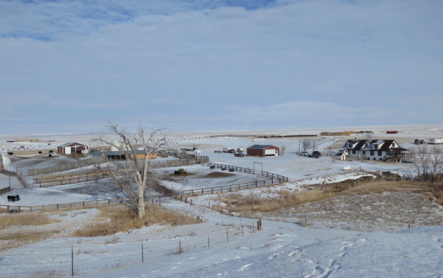 Ranch, Winter 2013